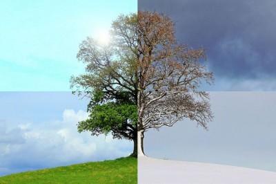 Immer im Trend - Frisuren und Jahreszeiten