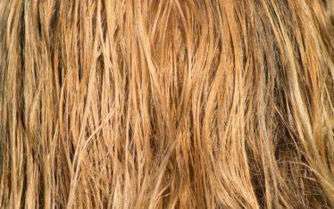 Mittel gegen Spliss - Unique Friseure München
